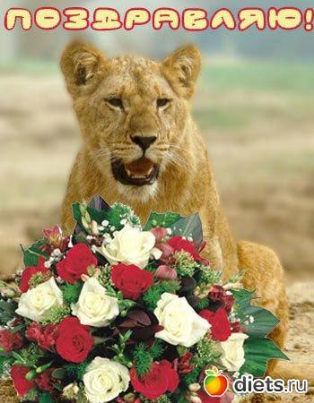 Открытка с днем рождения женщине львице, музыкальную открытку