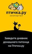 Птичка.ру ждет всех любителей домашних животных!