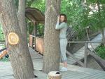 Необычное приспособление для уличной тренировки: дерево
