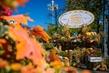 """Цесарка с абрикосами, """"Якутский"""" пирог с омулем, мятный квас и медовые тыквенные лепестки:  что попробовать на фестивале """"Золотая осень"""""""