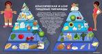 Система питания LCHF