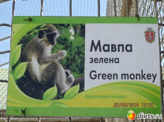 1 фото: Винницкий зоопарк