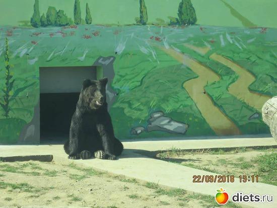 10 фото: Винницкий зоопарк