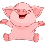 На то это и год свиньи...