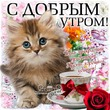 """Забег по системе """" Минус 60"""". отчёт по питанию за 16.01.2019"""