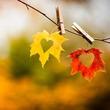 Личный Осенний Марафон. 94 дня. День  81-83