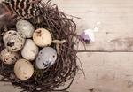 Перепелиные яйца: хороши и для похудения!