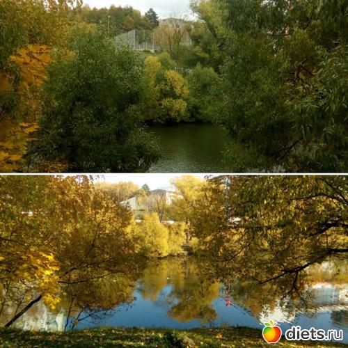 Такая разная осень разницей в год., альбом: Мои фото