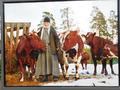 """Монастырский пастух"" Фото монаха Анастасия"