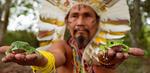 Церемония камбо – яд на пользу организму
