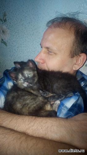 8 фото: Бусинка, моя девочка, солнечная кошка.