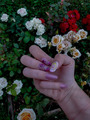 кто любит цветочки и романтику