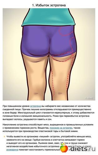 1 фото: Избыточный вес и гормоны