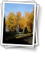 Осень  в Усть-Качке - 2020