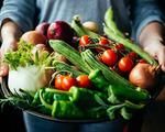 Сезонная пища и ее польза для организма