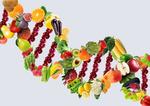 Влияние пищи на гены: что нужно знать?