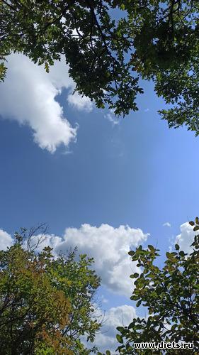 7 фото: Осень 21